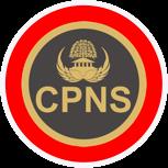 PROGRAM CPNS